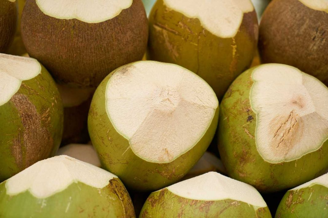 Coconut Water Weight Loss